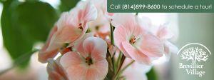 Call (814)899-8600 for a tour!
